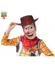 CARETA WOODY TOY STORY EVA