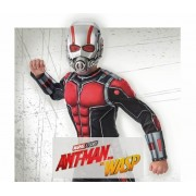 Disfraces Ant Man and The Wasp