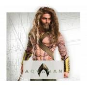Disfraces Aquaman